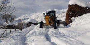 Kulp'ta kar nedeniyle kapanan yollar ulaşıma açıldı