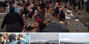 Kürtler koronavirüs tehdidine karşı 140 koyun kurban etti