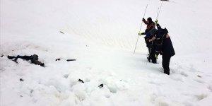 Van sınırında 7 sığınmacı donarak yaşamını yitirdi