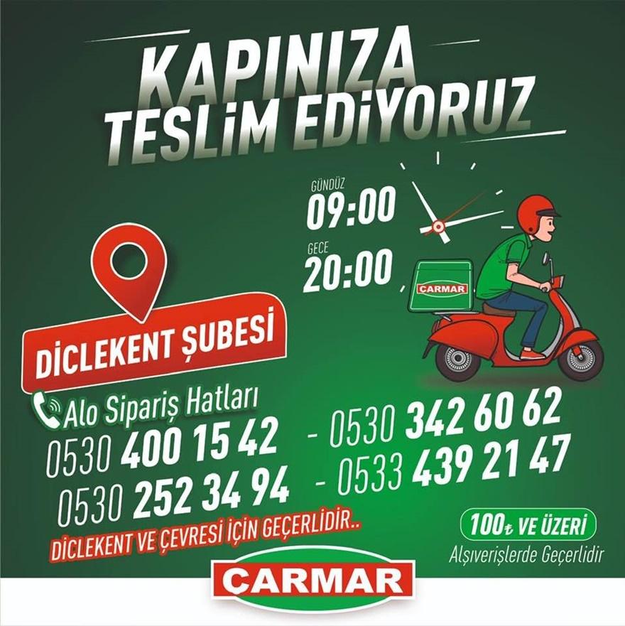 carmar-3.jpg