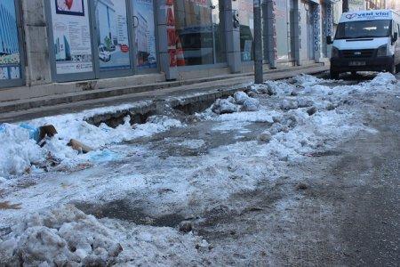 diyarbakir'daki-kar-'doga-olayi'-mi-'belediyenin-eksikligi'-mi-(2).jpg