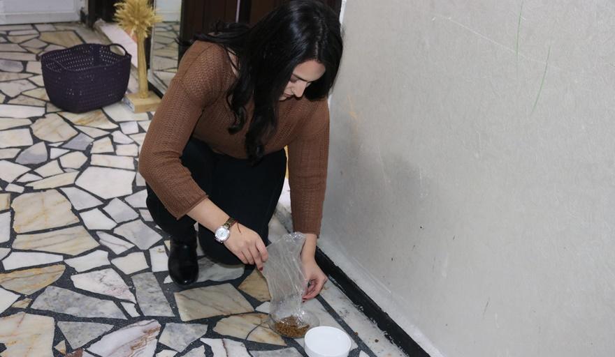 diyarbakirda-tabaktan-elleriyle-su-icen-fare-(2).jpg
