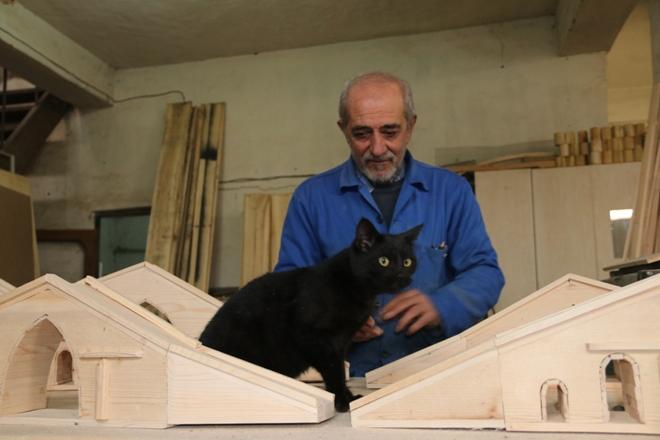 marangoz-kedi-(2).jpg