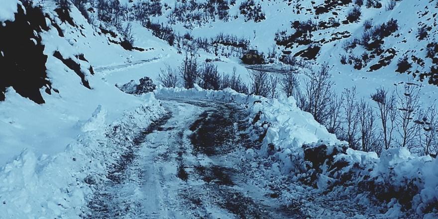 sirnak'ta-2-metre-kar--koy-yollari-ulasima-kapandi-(1).jpg