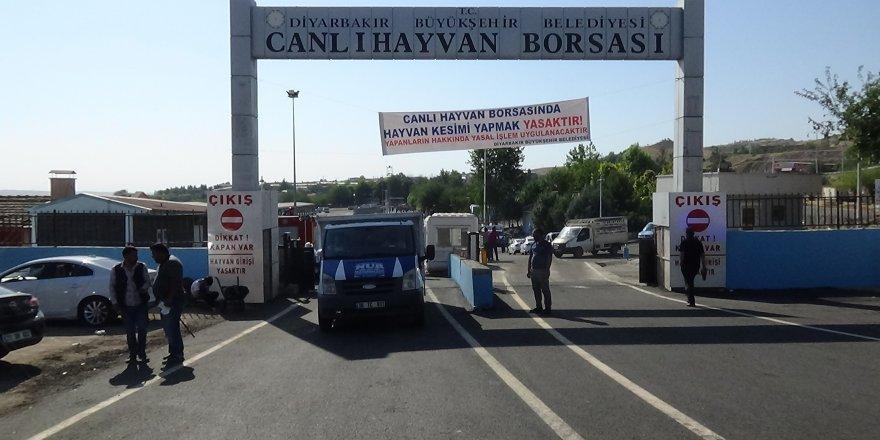 Diyarbakır Canlı Hayvan Borsası açıldı