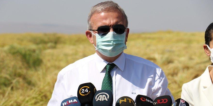 Diyarbakır Valisi, Karacadağ Pirinci hasadını başlattı