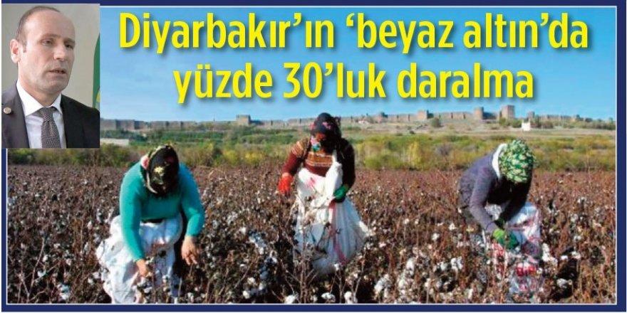 Diyarbakır'ın 'Beyaz Altın'ında yüzde 30'luk daralma