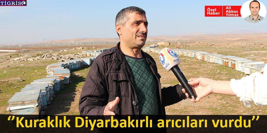 Kuraklık Diyarbakırlı arıcıları vurdu